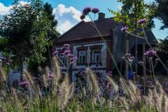 Gmina-Wiskitki-12-Duzy