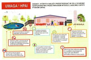 Zasady bioasekuracji- Ptasia grypa-1