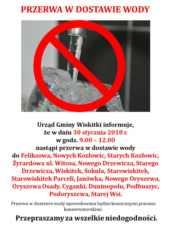 Wiskitki_26.01.2018